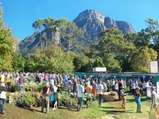 Investec Kirstenbosch Plant Fair