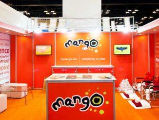3D Mango stand at Indaba