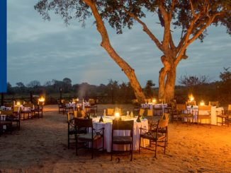 Protea Hotels and Marriott branding