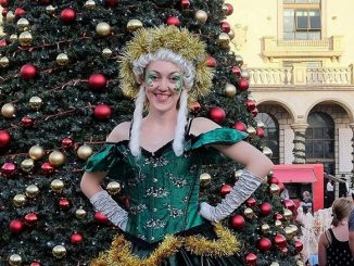 Montecasino Christmas Market